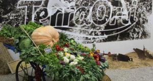 Terra Orti protagonista dal 10 al 12 maggio con Italia Ortofrutta al Macfrut di Rimini